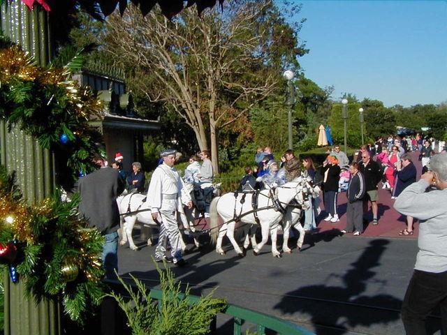 Horses pulling Cinderella's coach in 2003 Walt Disney World